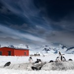 Antarctica Within The Frame 2012 – Glenn Dixon