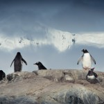Antarctica Within The Frame 2012 – Sam Krisch