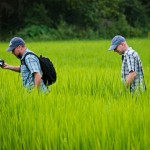 Jeffrey and David in a rice paddy in Laos • Laos+Angkor Within The Frame 2011 • photo: Victor Allen Rowley